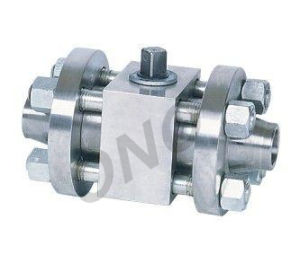 Floating Butt Weld Threaded Type Ball Valve with Ce Approved pictures & photos