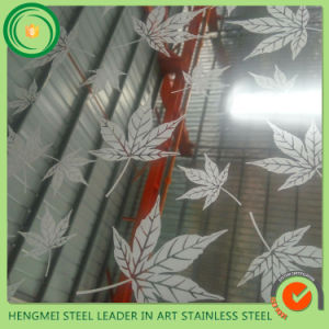 201 304 316 Color Etching Decorative Stainless Steel Wall Panel for 3D Wall Decor pictures & photos