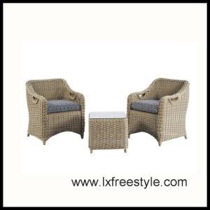SGS Pass Rattan Sofa Set / PE Rattan Outdoor Furniture (SF-002)