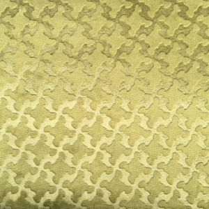Embossed Velvet (BL093-Embossed) pictures & photos