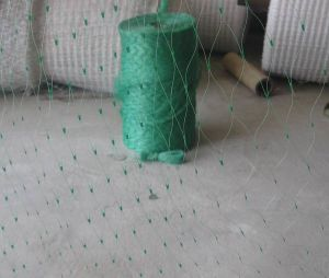 Green Color Anti Bird Protection Netting for Vegetables pictures & photos