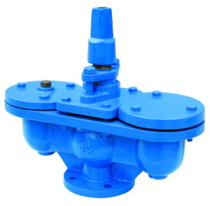Flange Air Valve with Integral Isolating Valve pictures & photos