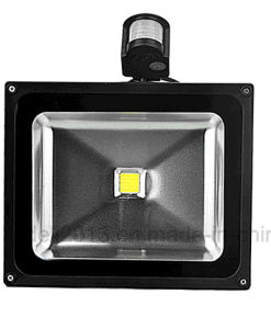CE Approved 10W 20W 30W 50W 100W RGB Sensor PIR LED Flood Light (COB) pictures & photos