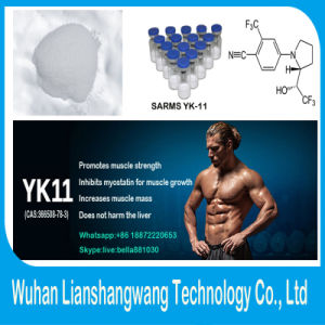 Sarms Yk-11 for Increasing Muscle Mass CAS 366508-78-3 pictures & photos