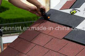 Standard 3-Tab Colorful Fiberglass Asphalt Shingles Roofing Material pictures & photos