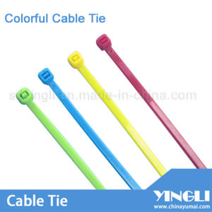 Colorful Cable Ties in Different Size in Nylon pictures & photos