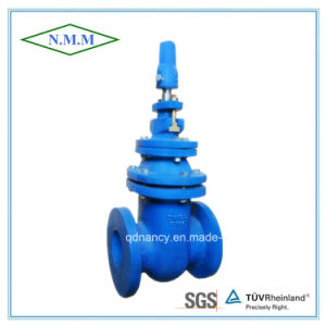 BS Standard Cast Iron Metal Steated Gate Valve pictures & photos