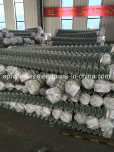 Galvanized Chain Link Fence Wire Mesh pictures & photos