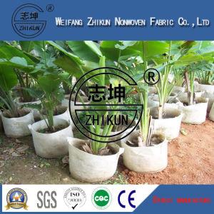 Polypropylene Agriculture Non Woven Fabric pictures & photos