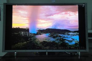 "52"" Outdoor Ultra Low Power High Brigthness (1200nits) Advertising LCD Panel (BR52010D)"