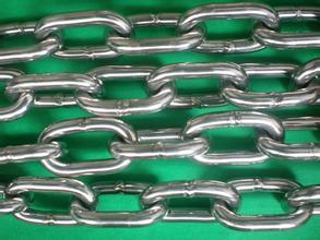 High Quality JIS Type Chain pictures & photos