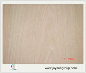 White Oak Plywood for Furniture and Door pictures & photos