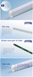6000k 900mm T8 LED Glass Tube with CE RoHS pictures & photos