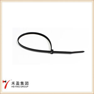 High Quality Self-Locking Nylon Cable Ties pictures & photos