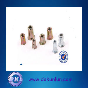 Professional Customized Stainless Steel Blind Rivet Nut Factory Price pictures & photos