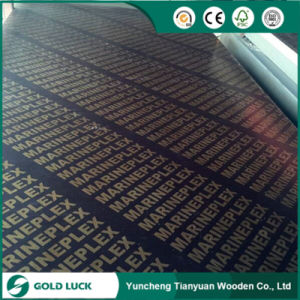 Phenolic Black Film Faced Plywood with Brand Names pictures & photos