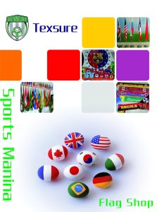 Flag for Festival/Advertisement/Decoration and Sports pictures & photos