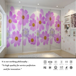 2015 New High Quality Sliding Door Withe Flower Design (Fy7658) pictures & photos