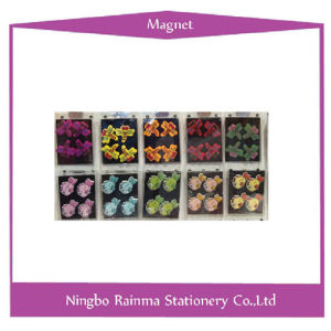 Color Button Magnets with Flower Shape pictures & photos
