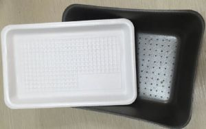 Competitive Price Plastic Foam Fruit and Vegetable Packaging Food Grade Plastic Tray with High Quality pictures & photos