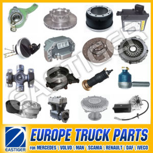 Over 700 Items Truck Parts for Scania 114 pictures & photos