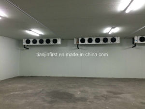 Commercial Cold Storage Cold Room, Walk in Refrigerator, Freezer Room pictures & photos