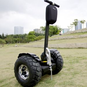 Wind Rover Ninebot Lithium Battery Scooter (V6+) pictures & photos
