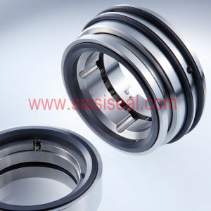 Burgmann Pulace Seal Repalcement (Pusher seals, mechanical seal) pictures & photos