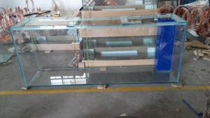 Glass Square Fish Tank pictures & photos