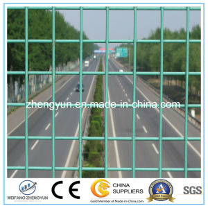 Green Powder Coated Welded Wire Mesh Panel pictures & photos