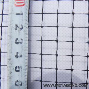 Black HDPE Drawing Bird Netting for Vineyard pictures & photos