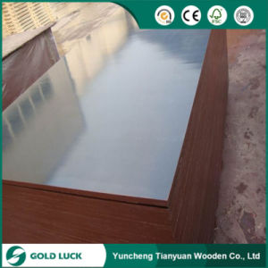 12mm Shuttering Plywood for Constuction for Thailand Market pictures & photos