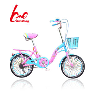 16′ Studend/ Kids Bicycle with Basket and Carrier pictures & photos