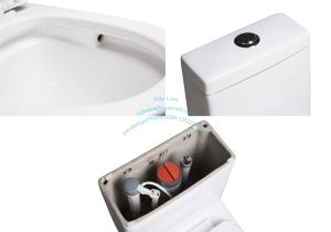 Wholesale Best Design American Mexico Peru One Piece Wc Toilet Siphon Vortex with Jet pictures & photos