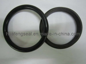Geotze 76.90-H-06 1M8746 Oil Seal pictures & photos