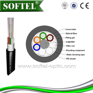 8/24 Core Fiber Optical Cable GYFTY Fiber Optical Cable pictures & photos