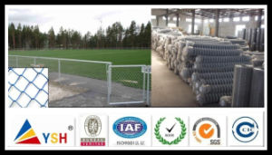 Chain Link Fence (PVC coated&galvanized)