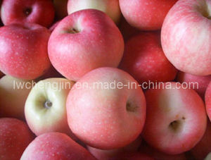 Delicious FUJI Apple 2015 New Crop Qixia Apple pictures & photos