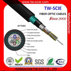 24 Core Sm Armored Outdoor Installation Optic Fiber Cable GYTA53 pictures & photos