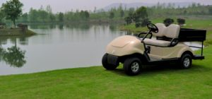 Multi-Function Vehicle 2 Seat Electric Golf Cart with Cargo Box From Dongfeng on Sale