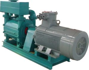 2be3 Stainless Steel Water Ring Vacuum Pump for Power Station pictures & photos