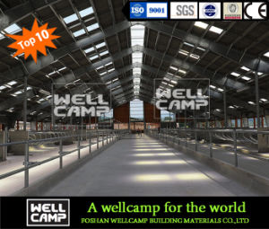 Wellcamp Hot-Sale Steel Structure Cowshed pictures & photos