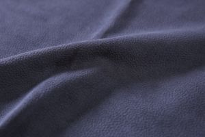 Burnout and Print Velvet Fabric for Uphostery Chair and Sofa pictures & photos