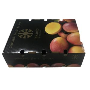 Strength Recycled Mangoes Packaging Box with High Quality pictures & photos