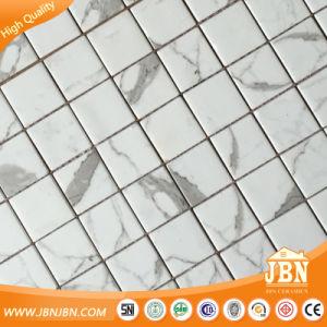 Calacatta Blanco Subway Mesh-Mounted Glass Mosaic Tile (V671001) pictures & photos