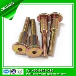 Ss316 Stainless Steel Big Round Head Machine Screw M6 pictures & photos