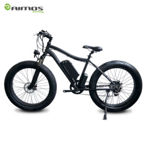 AMS-Tde-01 Fat Tire Ebike with 48V 1000W Gear Motor pictures & photos
