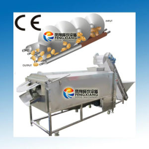 Lxtp-3000 Potato Washing Peeling Machine, Carrot/Ginger Washing and Peeling Machine, Fruit and Vegetable Washer and Peeler pictures & photos