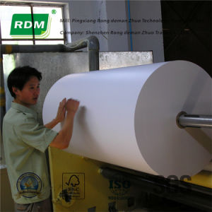 Carbonless Paper Roll for Web Offset Press pictures & photos