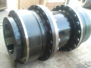 Curved Tooth Gear Coupling pictures & photos